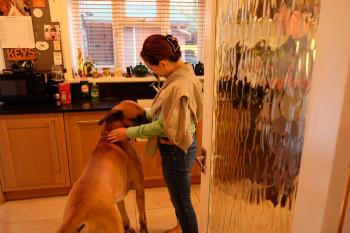 犬が苦手な人はリクエストできます。とってもいい子ですよ!